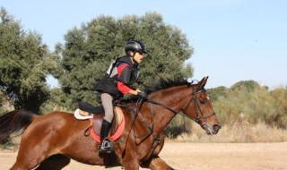 Equitación: dos hermanos sevillanos campeones de España