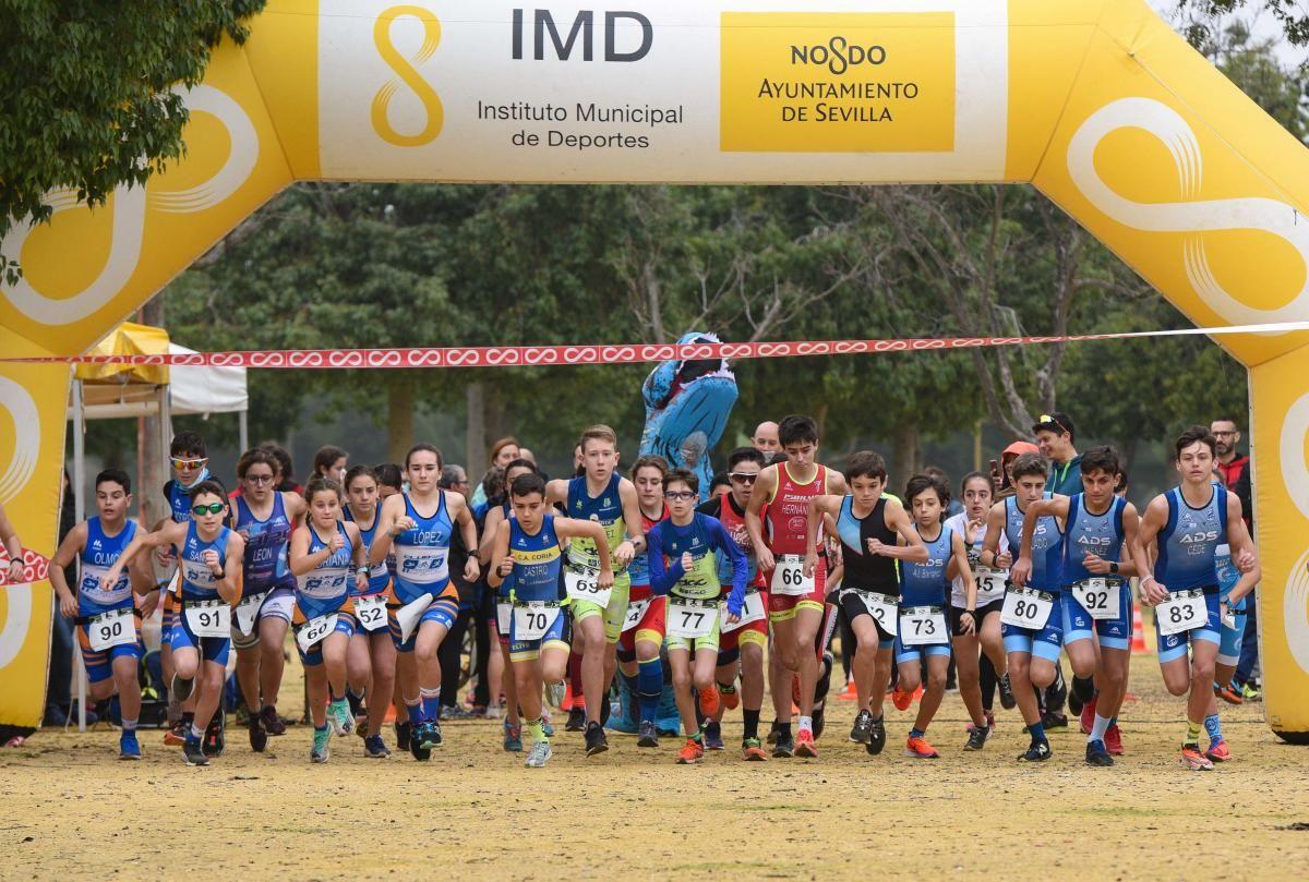 Actividades del IMD para mantener la actividad deportiva