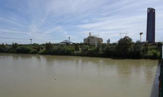 Rutas de senderismo más vistas de Sevilla